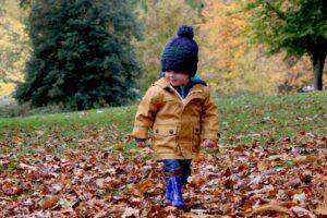 EPIQ Children's Nature Walk: Fall Trees @ Base de Plein Air Sainte Foy